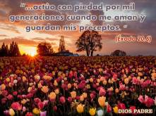 Exodo 20, 6