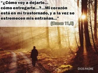 Oseas 11, 8